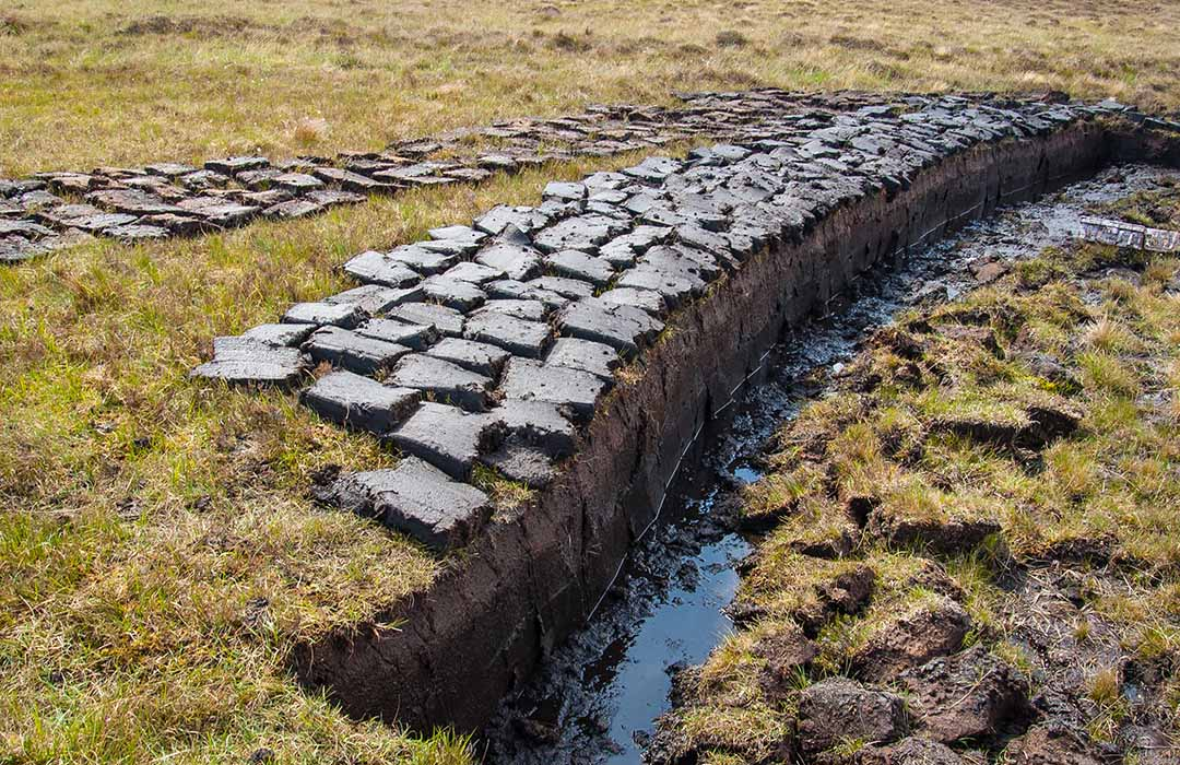 The Scotch Whisky Peat Scale Explained