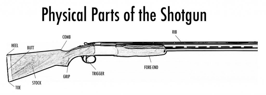 gun fitting guide  how to fit a shotgun to yourself